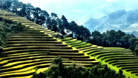 Les 10 meilleures images de Mu Cang Chai - Yen Bai