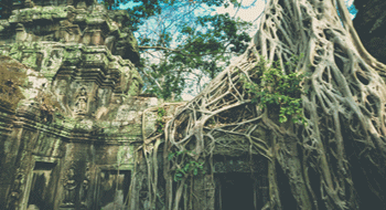 Travel in Cambodia in 10 or 11 days