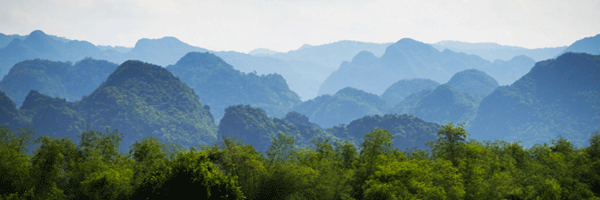 Phong Nha Ke Bang National Park in Vietnam