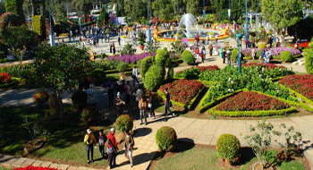 Dalat in Vietnam welcomed 265,000 travelers during the Tet holiday