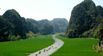 Halong Bay On Land in Vietnam during the rice harvest